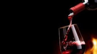 Şarabın Yararları