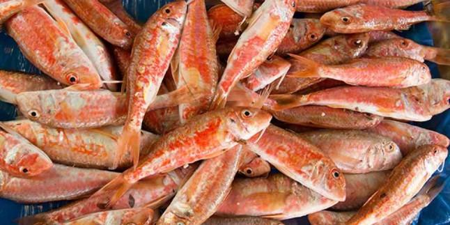 Tekir balığı nasıl temizlenir? Balık ayıklamanın pratik yöntemi