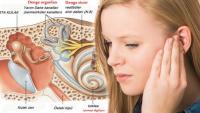 Kulak kristali kayması neden olur? Kulak kristalinin oynadığına dair belirtiler nelerdir?