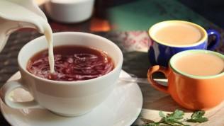Nogay çayı nedir? Nogay çayı nasıl yapılır? Nogay çayının faydaları