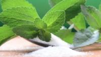Stevia bitkisi ne işe yarar? Stevia bitkisinin faydaları nelerdir?